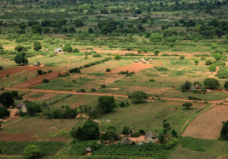 land_governance